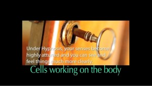 Cells Working on the body