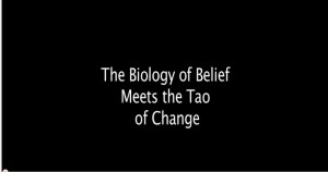 The biology of belief meets the tao of change