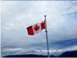vote federal