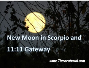 new moon in scorpio 1111 gateway